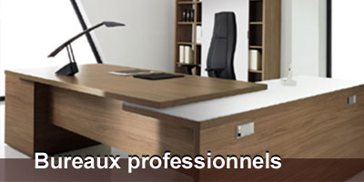 armoire de bureau professionnel. Black Bedroom Furniture Sets. Home Design Ideas