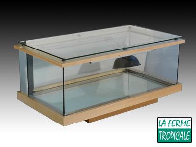table basse terrarium. Black Bedroom Furniture Sets. Home Design Ideas