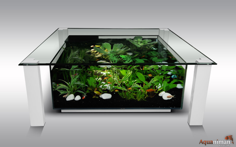 Table basse aquarium for Aquarium meuble tv