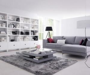 tapis salon gris