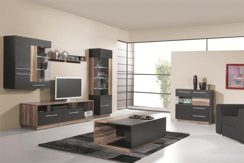 exemple meuble salon bois