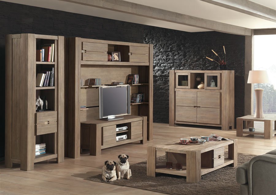Meuble salon en bois for Mobilier pour salon