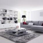 tapis salon gris conforama