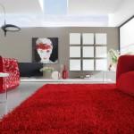 tapis salon noir et rouge